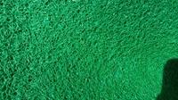 Шлюзовое покрытие зеленое (канадский мох)